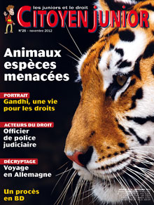 Citoyen Junior n° 25 - Novembre 2012